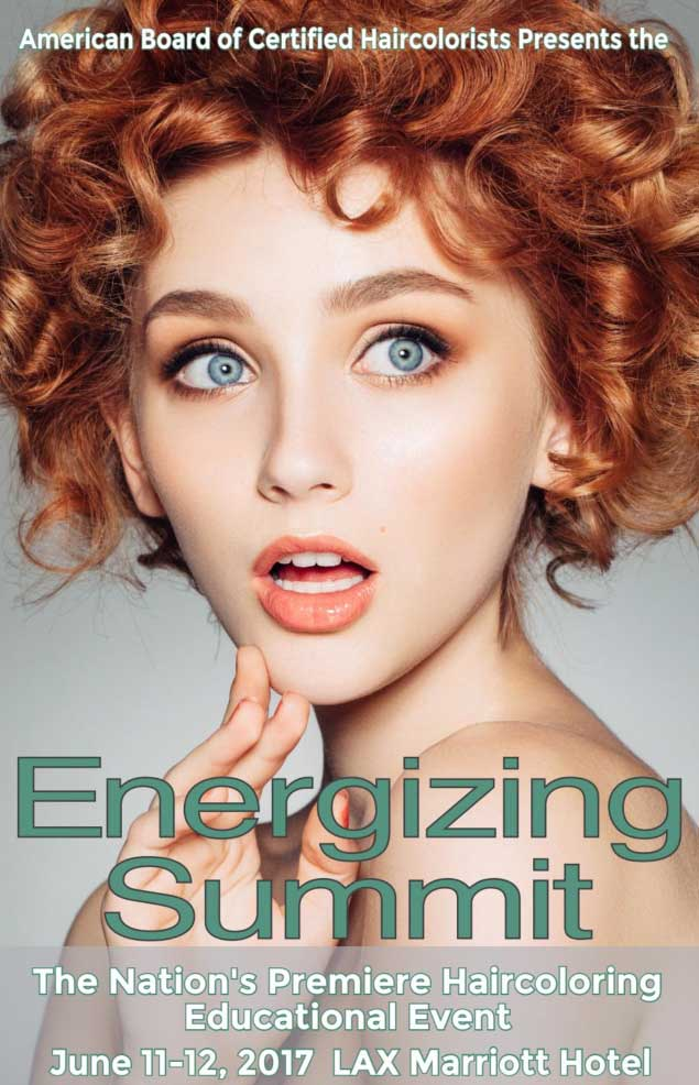 2017 Energizing Summit